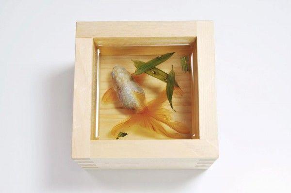 Three-Dimensional Goldfish Embedded in Layers of Resin. Riusuke Fukahori.