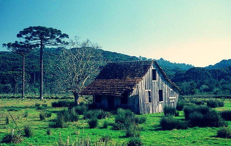Caxias do Sul, RS | Brazil