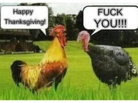 View the 576 best Funny Thanksgiving Photos,  Funny Thanksgiving Images,  Funny Thanksgiving Pictures. Download photos or share to Facebook, Twitter, Tumblr, Blogger