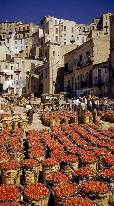 """""""Baskets filled with tomatoes stand"""".. Sicily, Italy // by Luis Marden"""