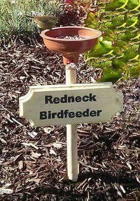 "Redneck Bird feeder! (Bird feeder is actually 2 words. Not 1)....thus the ""redneck"" factor...Lol                                                                                                                                                      More"