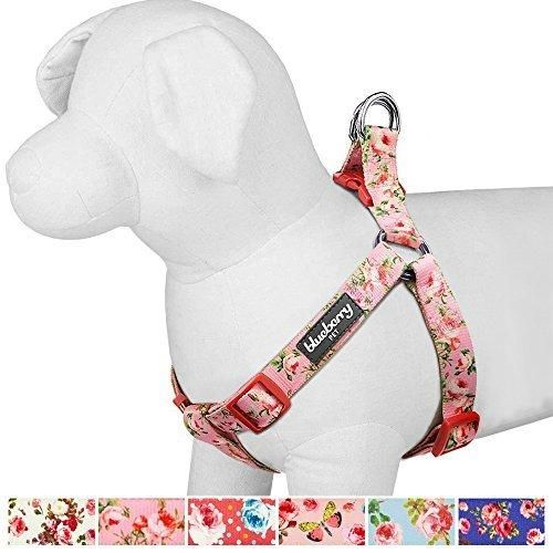 """Blueberry Pet Step-in Spring Scent Inspired Floral Rose Baby Pink Dog Harness Chest Girth 19.5"""" - 25.5"""" S/M Adjustable Harnesses for Dogs"""