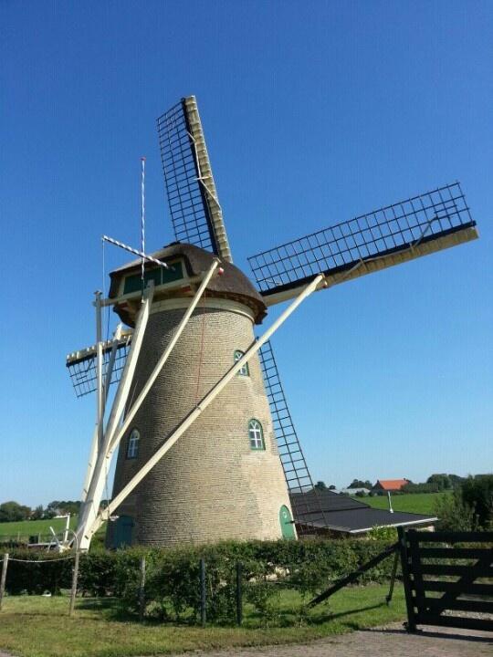 38 degrees last summer in nederland