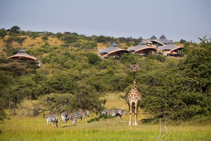 Mahali Mzuri is Swahili for 'beautiful place' but no language on this Earth can adequately describe what is quite possibly the most extraordinary safari lodge in all of Africa; you'll feel as though you've just entered a separate universe altogether and when you return, you too will be speechless. Watch as baby lion cubs trail close behind their mother, as giraffes gallop effortlessly across the never-ending Serengeti plains and as 1.5 million majestic wildebeest embark upon the Great…