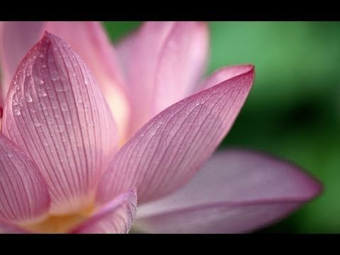 Beautiful,relaxing and healing meditation music by Merlin's Magic.This has been one of our favorites for Meditation,Reiki and relaxing into sleep. You can pu...