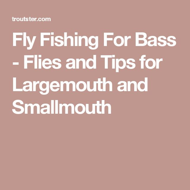 Fly Fishing For Bass - Flies and Tips for Largemouth and Smallmouth