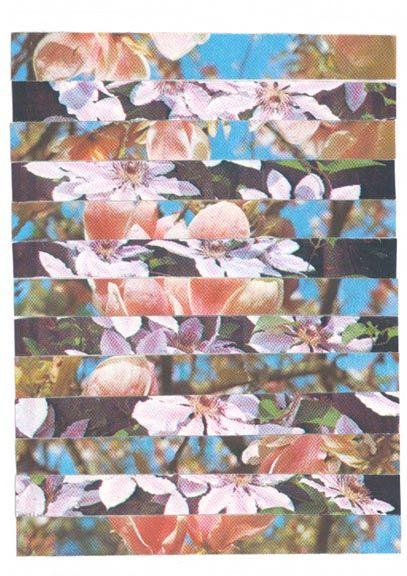cur3se collage vintage