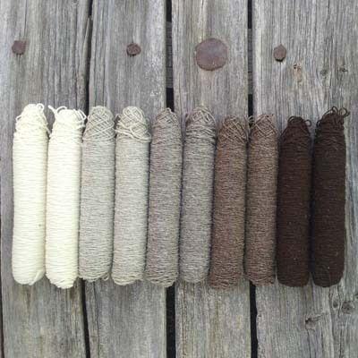 mondo lanar - león (spain):  5 natural colours