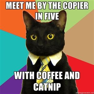 For coffee addicts - business cat meme http://psychocrypt.com