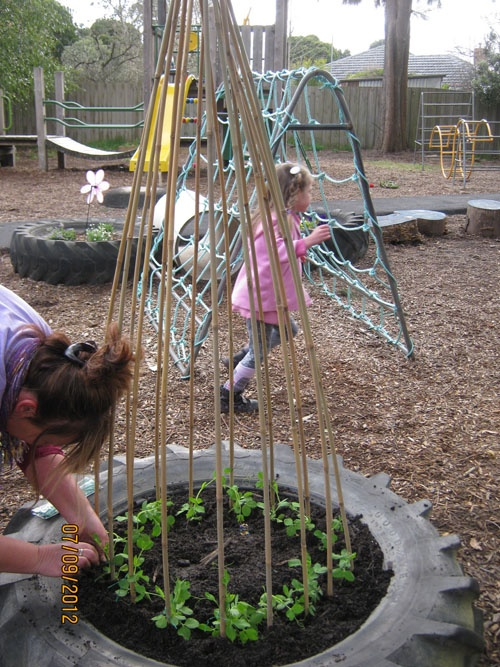 """Another image of a tire used for planting - bamboo sticks make the pyramid trellis. ("""",)"""