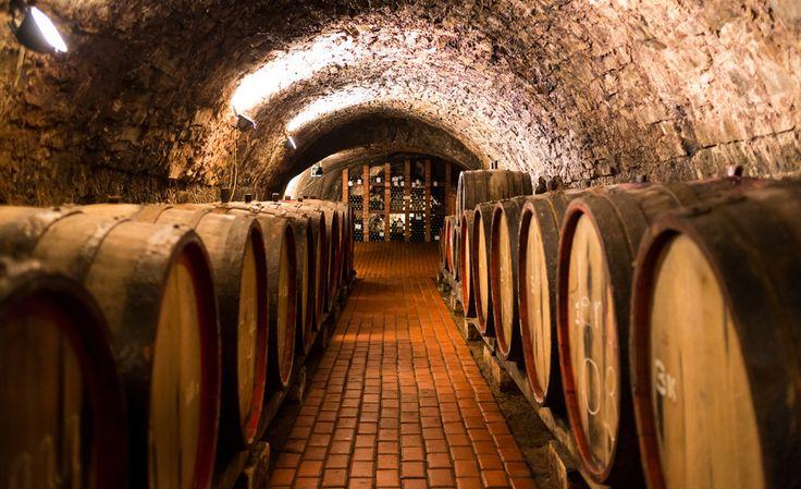 Un viaje entre viñedos con mucha historia #CaminosAlternativos