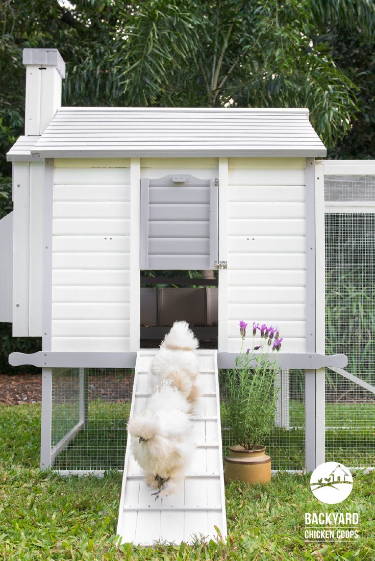 23 best the penthouse chicken coop images on pinterest chicken