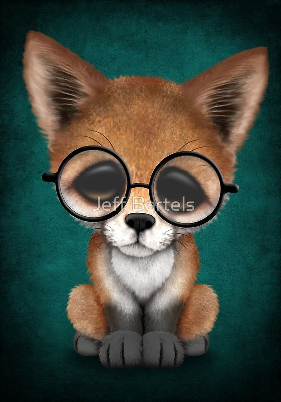 Cute Red Fox Cub Wearing Glasses on Teal Blue | Jeff ...