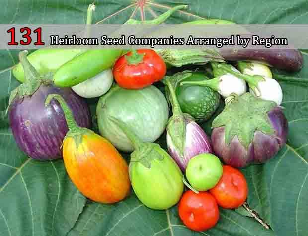 garden seed companies. 131 heirloom seed companies arranged by region seeds, vegetables and gardening are garden