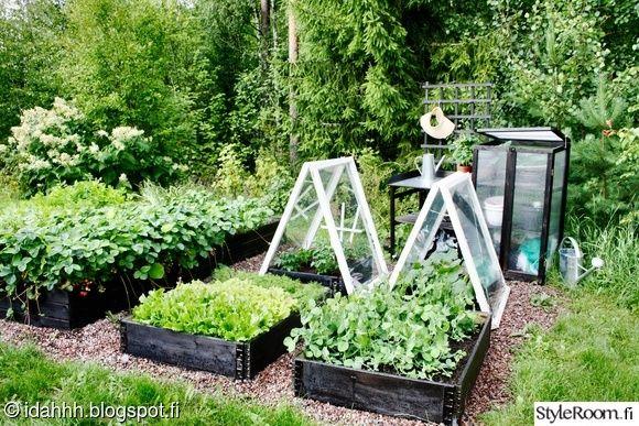 piha,puutarha,hyötypuutarha,kasvimaa,diy