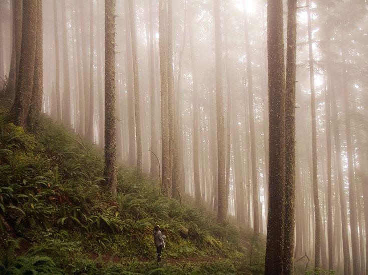 Oregon hiker along the coastal region.
