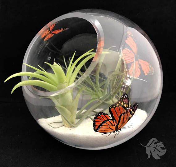 Monarch Butterfly Hand Painted Glass Globe by LKCustomCreations