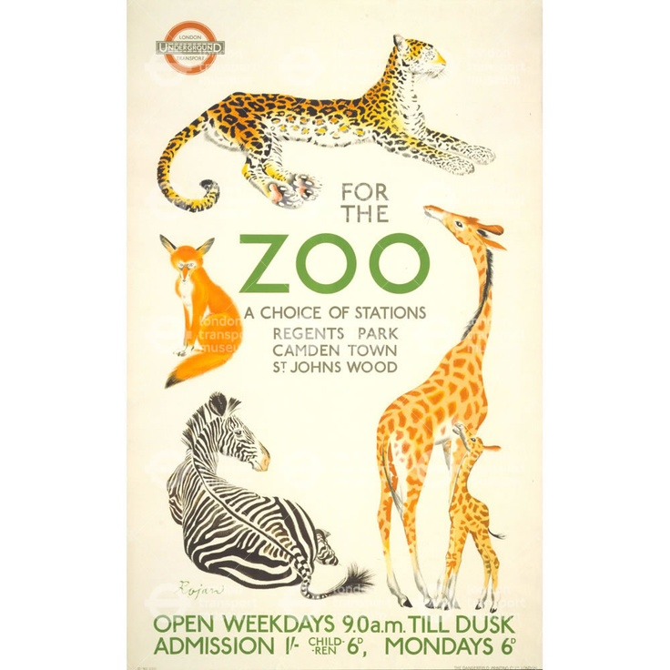purpose of zoos essay This essay will discuss the reason why it is important to keep the animals in the zoos to begin with, i personally agree that animals should be kept in the zoos for example, if animals such as lion, are left out in the street, it could cause a lot of damage, including killing people.