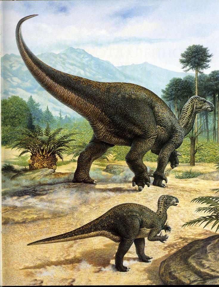 Животный мир :: Рисунки динозавров :: фотография 2