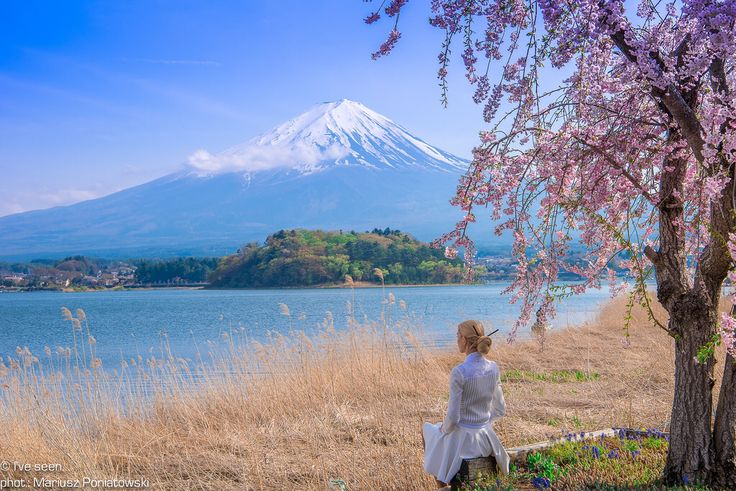 Mount Fuji from Lake Kawaguchi, Kawaguchico, Japan Travel to Japan with @iveseen_