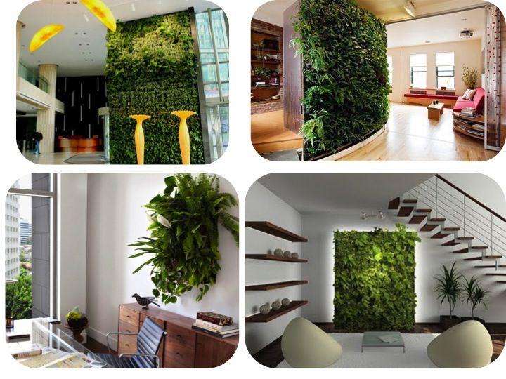 Jardines verticales de pared vertical wall gardens verde for Jardines pequenos para oficina