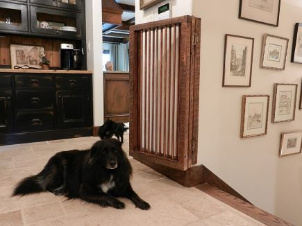 best 25 custom dog gates ideas on pinterest farmhouse dog gates baby gates and baby door - Doggie Gates