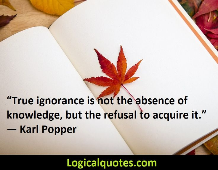 Inspirational Karl Popper Quotes - Logical Quotes