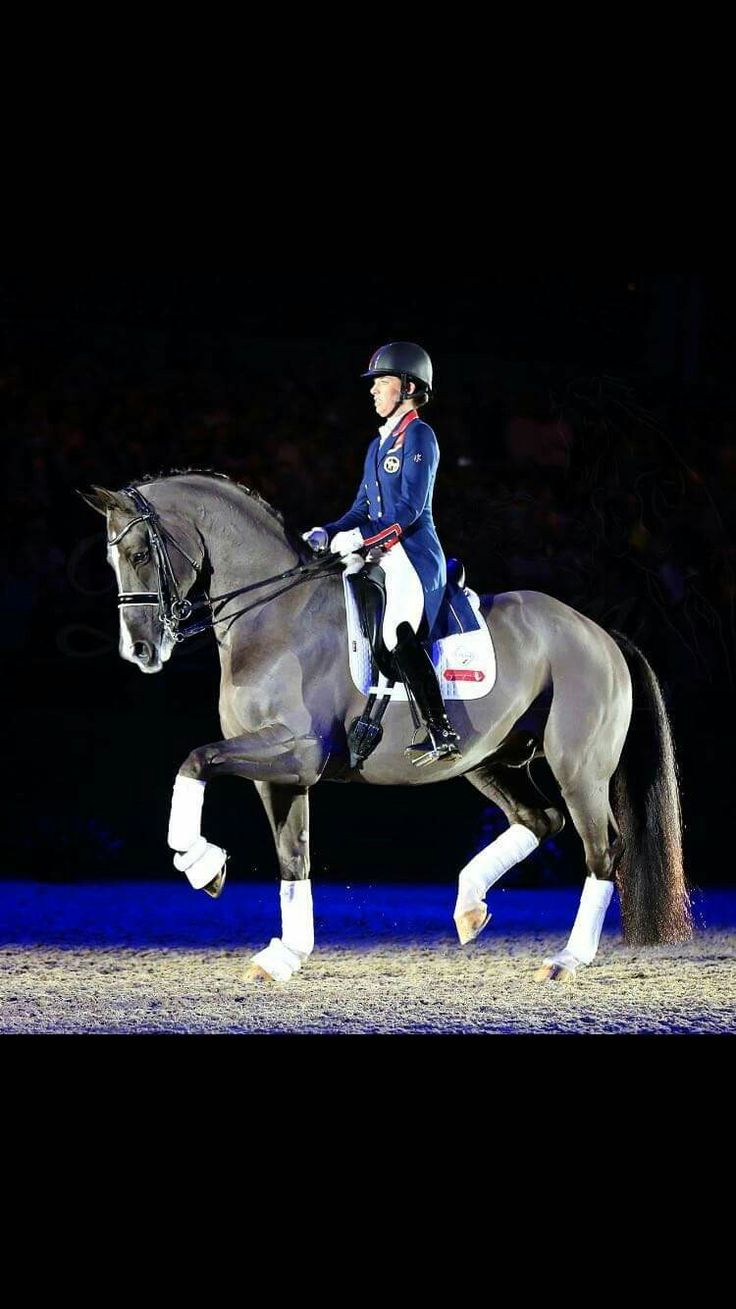 Charlotte and Valegro the best pair!! We will miss seeing the two of you!