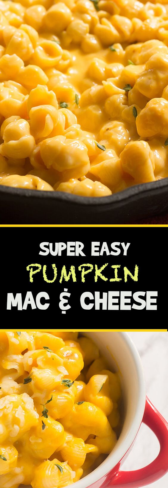 I'm all in with this super easy pumpkin mac and cheese. This recipe is full of flavor and can be whipped up in a few minutes. Make it today!