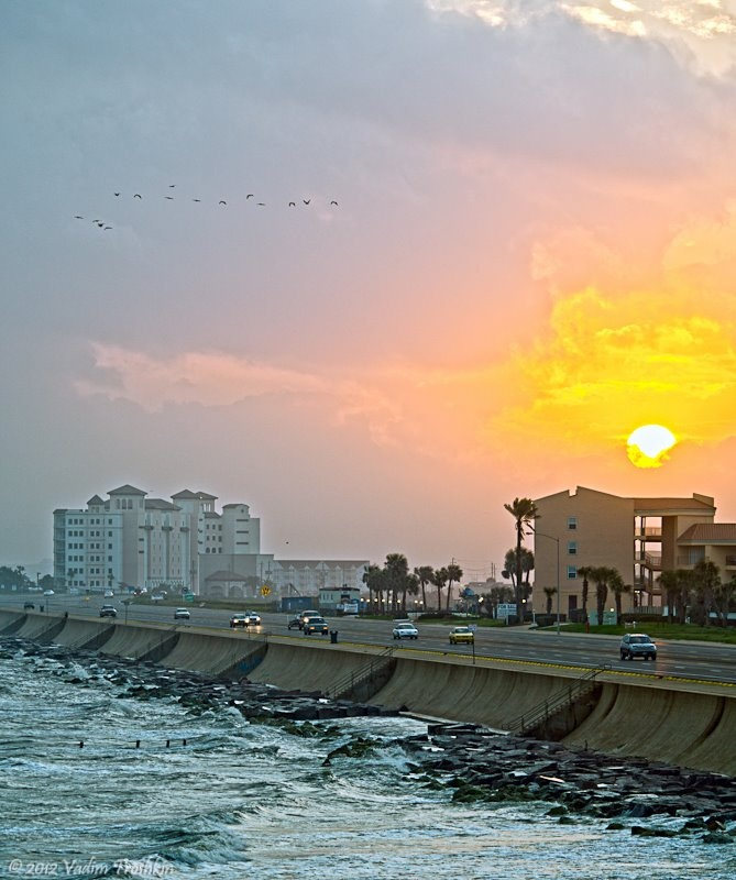 Galveston Tx: 115 Best Images About United States Beaches, Islands, And