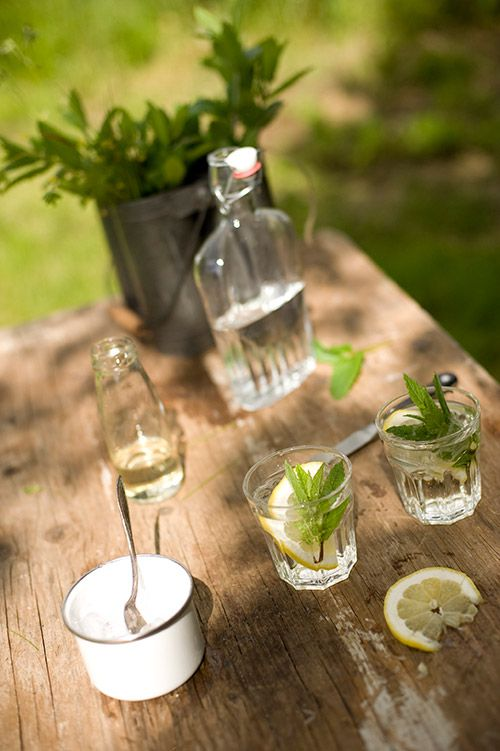 Summer Elderflower Drink ::    Ingredients 2 parts elderflower syrup         2 parts club soda        1 lemon        1 bunch of mint        1 to 2 parts gin to taste