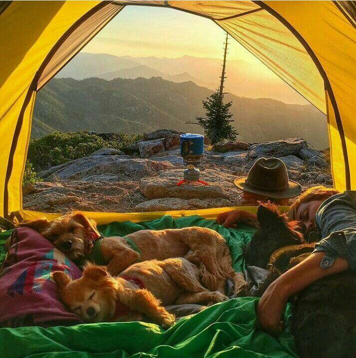зрачки веки веселые картинки с палатками затопили, создав