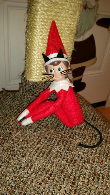 Elf on the shelf, On the shelf and Colored tape on Pinterest