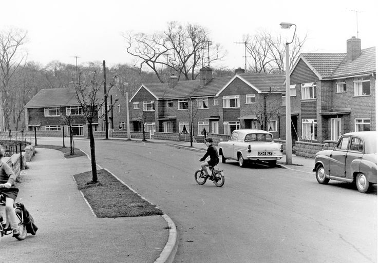 Children at play in Standon Drive, Low Wincobank with Woolley Wood in the background