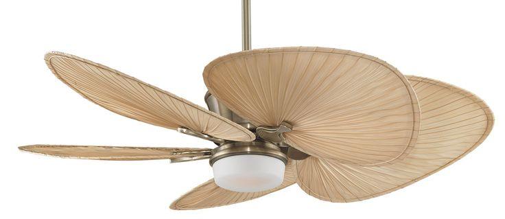 Fanimation mad3260ab isp1 antique brass with natural palm leaf blades sandella dc sandella 5 - Leaf blade ceiling fan with light ...
