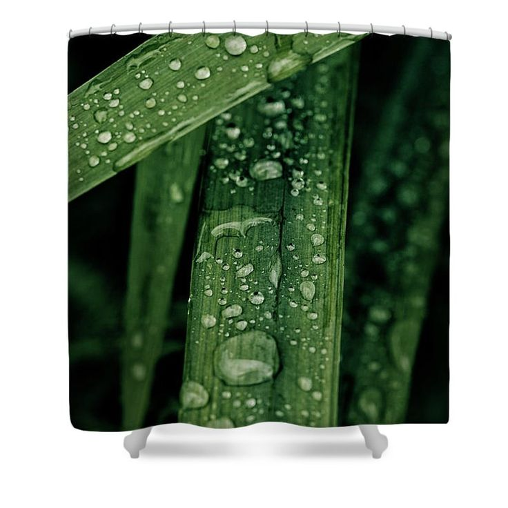 Grass Shower Curtain featuring the photograph Green Grass With Waterdrops by Oksana Ariskina on @pixels and @fineartamerica  Buy print and other product with my fine art photography online: www.oksana-ariskina.pixels.com   #OksanaAriskina  #FineArtPhotography #HomeDecor #FineArtPrint #PrintsForSale #Grass #Plant #Green #Spring #Summer #Drop #Tears #Teardrops #macro #Closeup