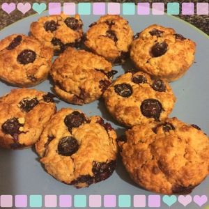 Blueberry Oat Breakfast Muffins