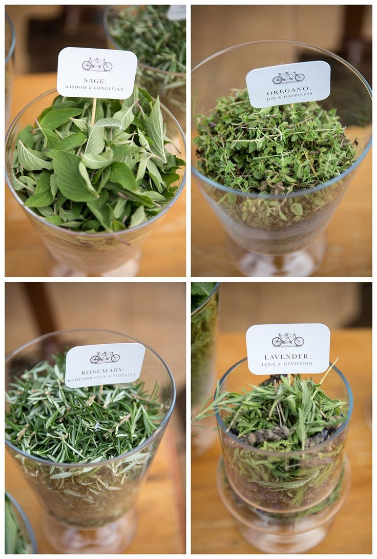 Herbs for confetti www.inkt.co.za
