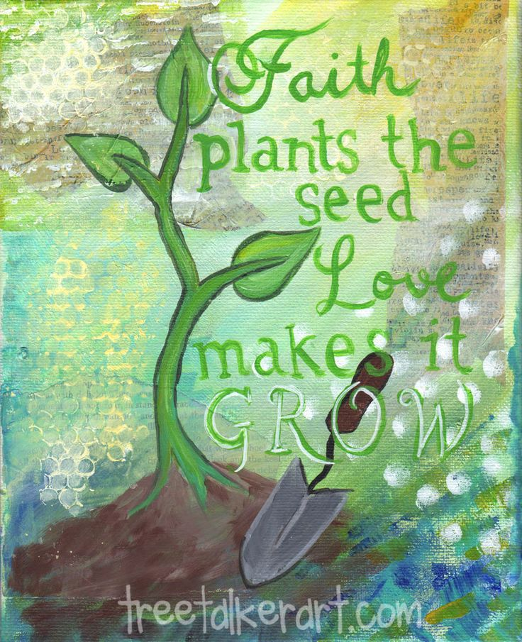 Garden Quote About Planting Seeds Positivity Overload