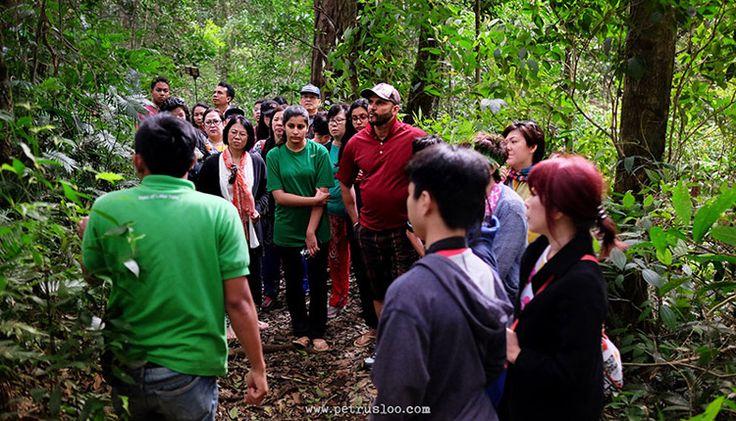 Jungle Trek di Taman Simalem Resort