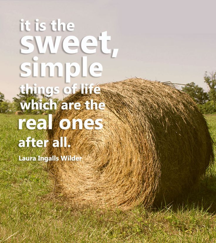28 best hobby farm wisdom images on pinterest hobby for Country farm simples