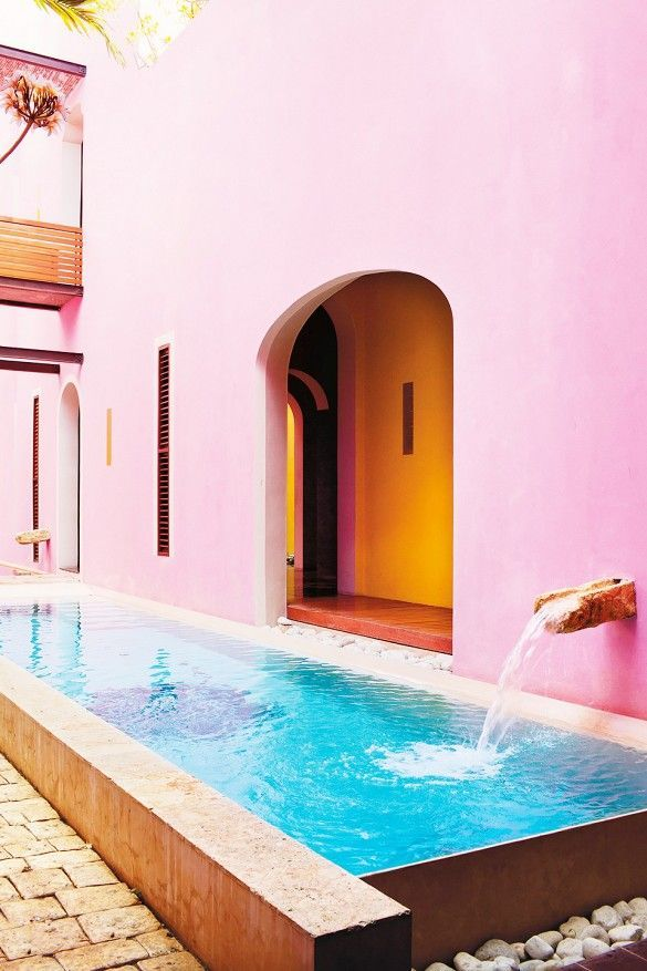 Rich pink walls make a gorgeous backdrop at Rosas & Xocolate