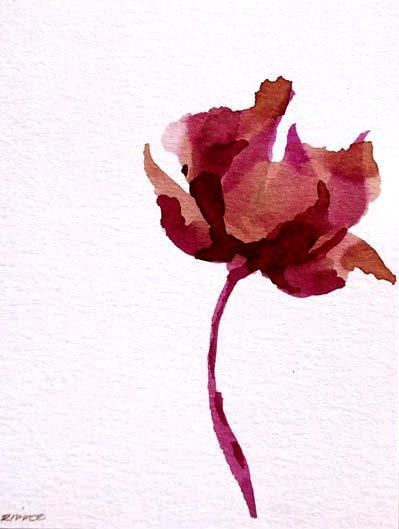 FLOWERS - Drawings with Ink, pencil and acrylic on acid free paper Sennelier/Paris 200gr by Cristina Ripper