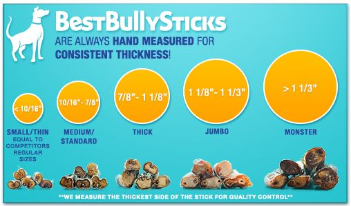 """Best Bully Sticks is now proud to introduce our own line of bully sticks Made in the USA! Bully Sticks are an excellent way to give your pet something to chew on that they'll love and are great for them, too. All of our bull sticks for dogs promote healthy teeth and gums. Available in sizes from 6"""" to 36"""", all of our bully sticks are 100% beef, meaning your dog will actually digest them, unlike their old rawhide chews. We hope you'll enjoy these bully sticks made right here in the USA."""