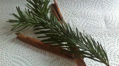 Nachdem man den Weihnachtsbaum abgeschmückt hat, kann man sich davon einige Zweige der Tanne abschneiden und für ein heilendes wohltuendes Vollbad nutzen.