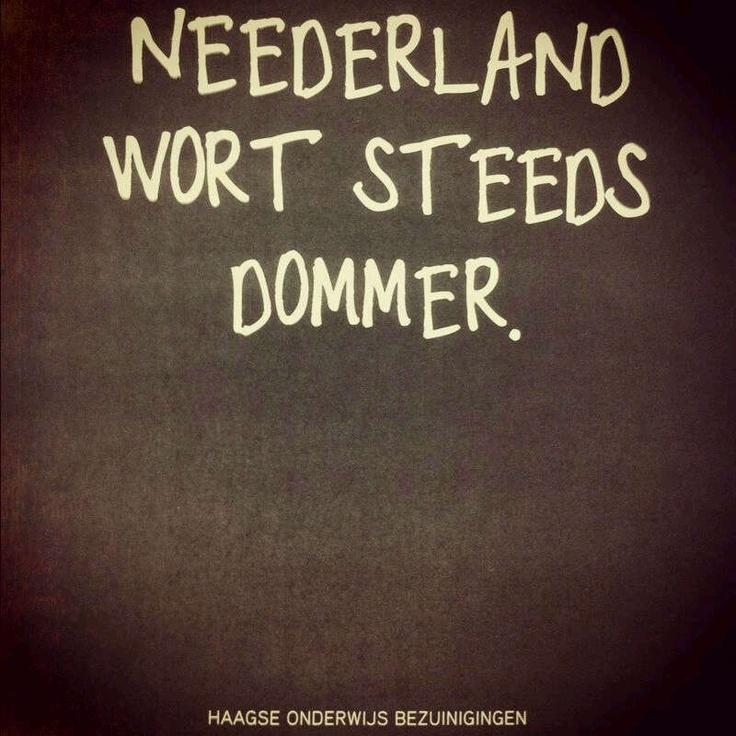 Neederland wordt steeds dommer. Advertentie.