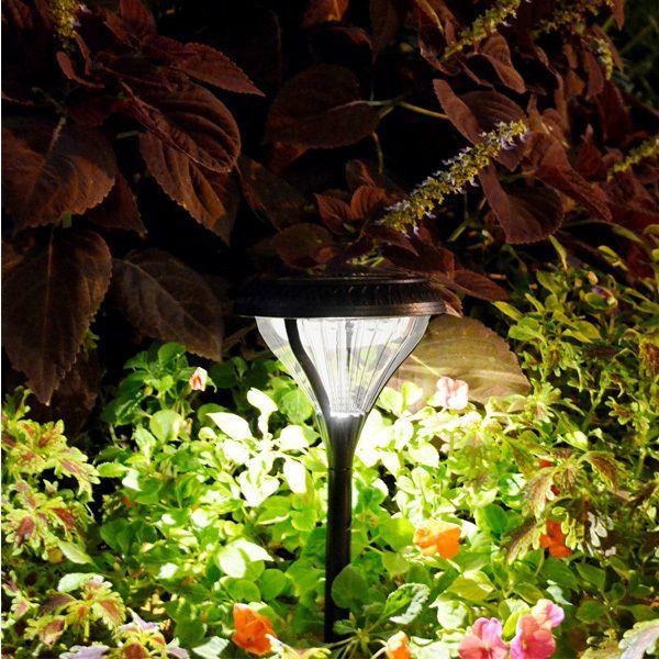 Solar LED Garden Lights Image