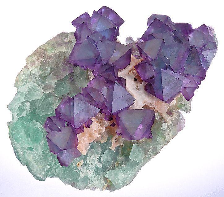 bi-colored Fluorite octahedrons on Quartz and green Fluorite
