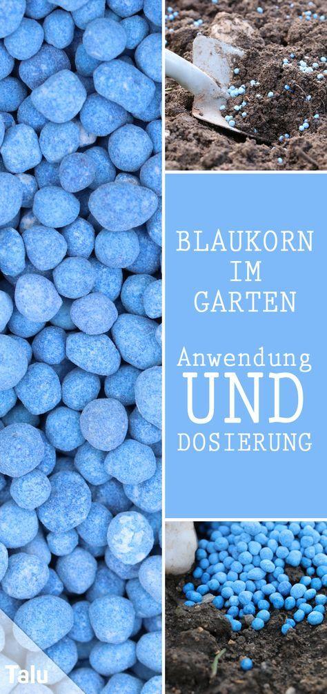 Anleitung zum Düngen mit Blaukorn - Zusammensetzung und Dosierung - Talu.de