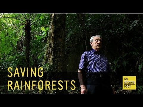 Restoring the Rainforest // 60 Second Docs - YouTube